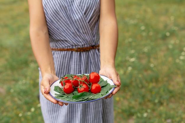 Frauengriffplatte mit frischen tomaten. gemüseplatte für picknick am waldhintergrund Premium Fotos