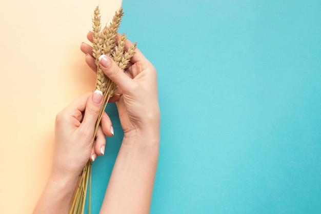 Frauenhände, die weat mit kopienraum halten Premium Fotos