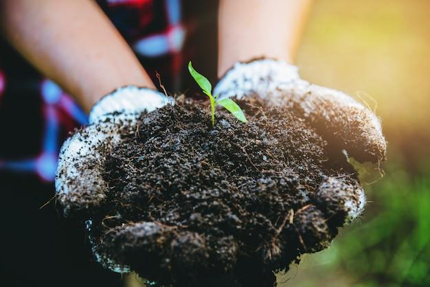Frauenpflanzengemüse Premium Fotos