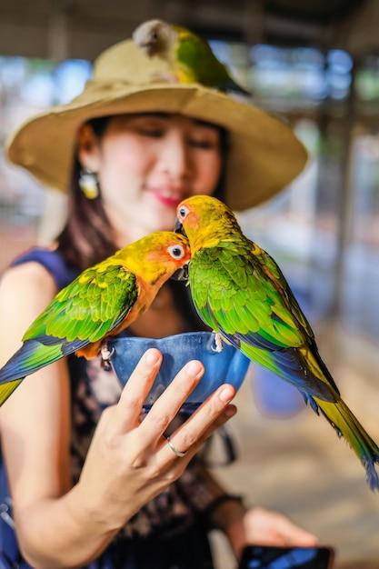 Frauenreisender, der eigenhändig vielen papageien in den vogelkäfig einzieht Premium Fotos