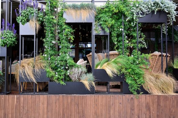 Freiluftcafé mit rattanmöbeln und vertikaler gartenarbeit. Premium Fotos