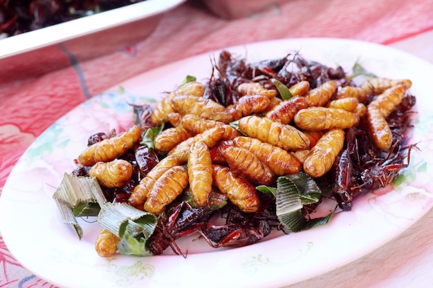 Fried insect am straßenlebensmittel Premium Fotos
