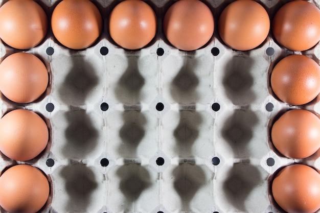 Frische eier vom bauernhof im panelweißbuch. Premium Fotos
