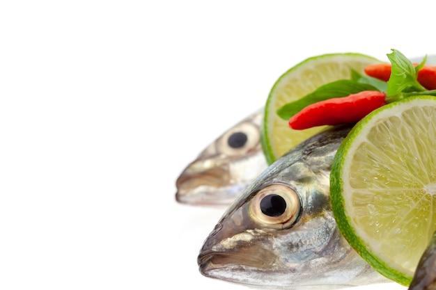 Frische fische mit der zitrone und blatt lokalisiert auf weißem hintergrund Premium Fotos