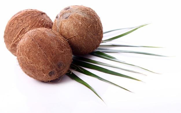 Frische kokosnüsse auf weißer oberfläche Kostenlose Fotos