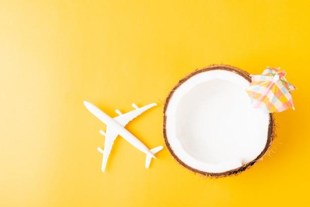 Frische kokosnuss, seesterne, flugzeug, flugzeug und sonnenschirm Premium Fotos