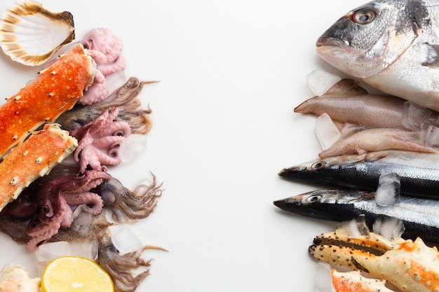 Frische meeresfrüchte der draufsicht auf tabelle Kostenlose Fotos