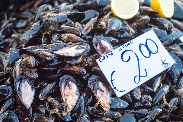 Frische miesmuscheln auf dem fischlandwirtmarkt bereit zum verkauf und gebrauch für bestandteil Premium Fotos