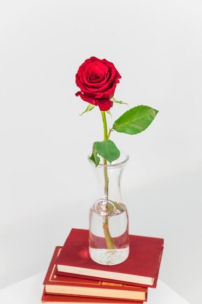 Frische rotrose im vase auf haufen von büchern Kostenlose Fotos