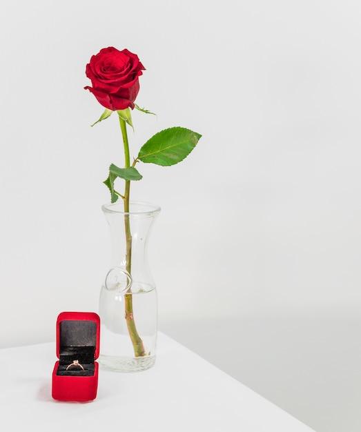 Frische rotrose im vase und präsentkarton mit ring auf tabelle Kostenlose Fotos