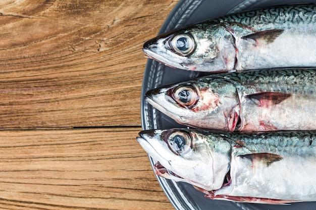 Frischer fisch makrele Kostenlose Fotos