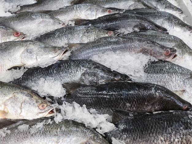 Frischer fisch zum verkauf im markt. weicher fokus. Premium Fotos