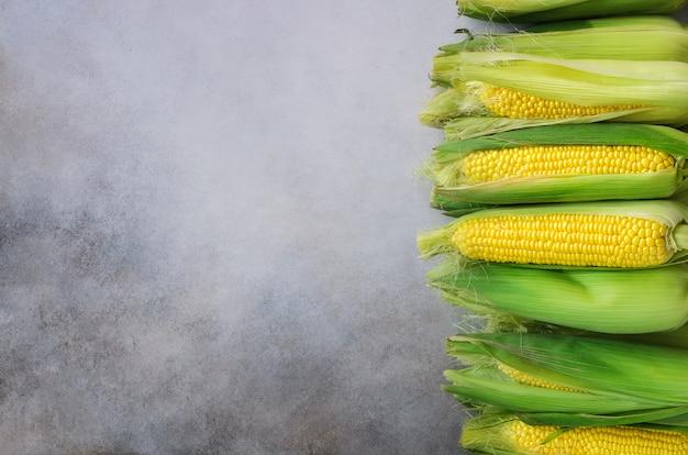 Frischer maiskolben auf hellgrauem beton Premium Fotos