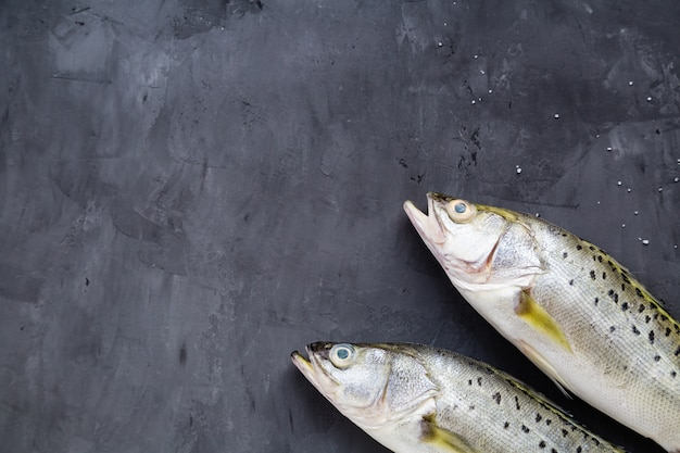 Frischer roher fisch auf dunklem steinhintergrund Premium Fotos