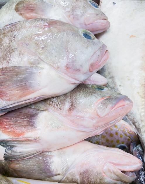 Frischer roter fisch im tablett. Premium Fotos