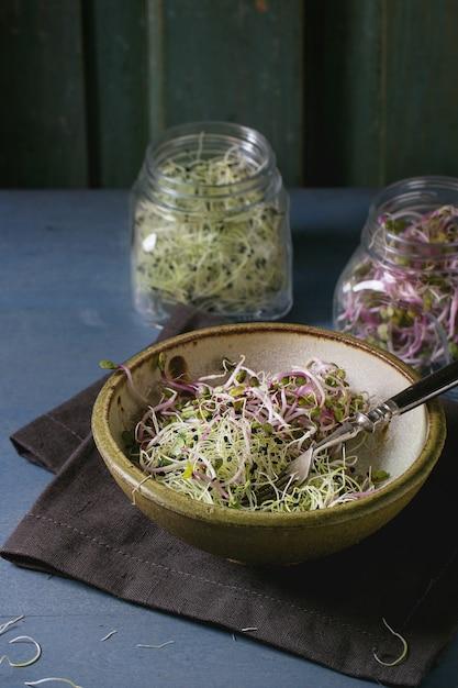 Frischer sprossen-salat Premium Fotos