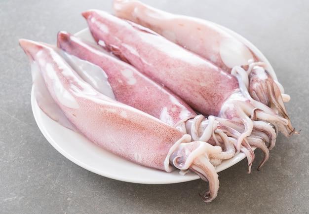 Frischer tintenfisch Kostenlose Fotos