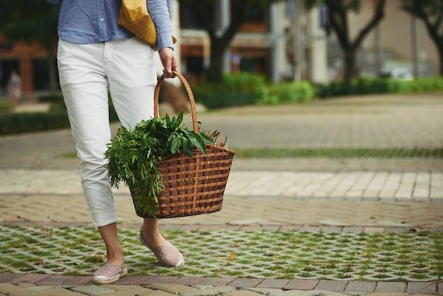 Frisches grün für den salat Kostenlose Fotos