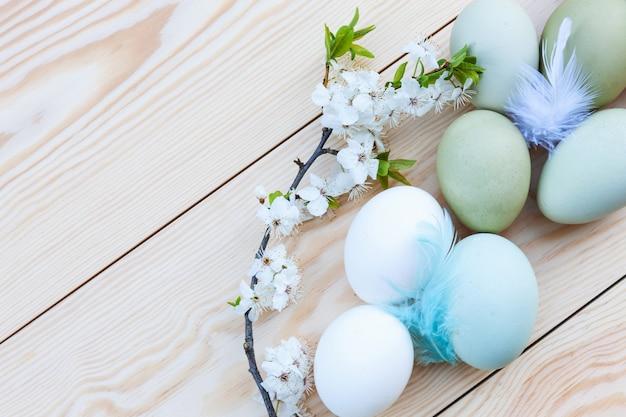Frisches hühnerbunte eier und kirschblüten auf weißem hölzernem hintergrund Premium Fotos