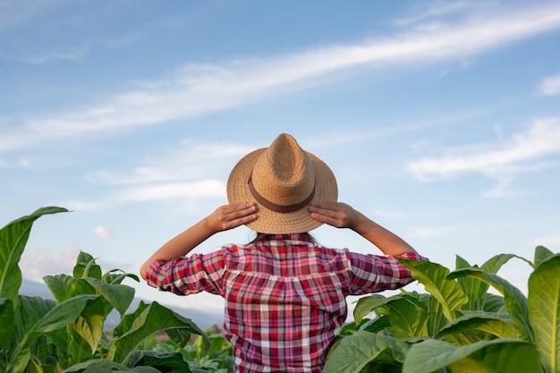 Fröhliche junge frau in einer tabakplantage. Kostenlose Fotos