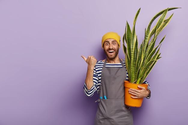 Frohes verkäufer posiert im blumengeschäft mit topf der grünen schlangenpflanze Kostenlose Fotos