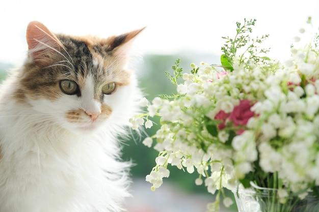 Frühling, flauschige hauskatze und blumenstrauß der frühlingsblumen am fenster Premium Fotos
