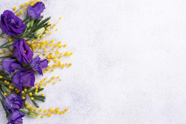 Frühlingsblumen mit exemplarplatz Kostenlose Fotos