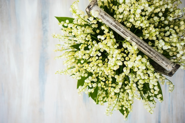 Frühlingsblumen Premium Fotos