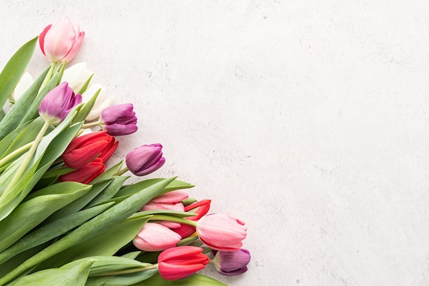 Frühlingskonzept. tulpenstrauß auf weißem betonhintergrund mit kopienraum Premium Fotos