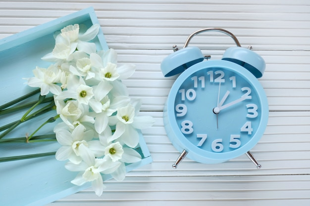 Frühlingszeit flache lage blauer wecker, blumenstrauß von weißen narzissen in einem blauen behälter auf einem hellen hintergrund frühlingsstimmung beschneidungspfad eingeschlossen, Premium Fotos