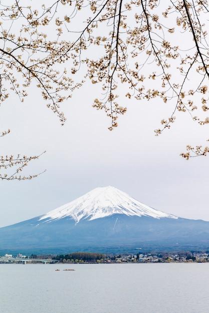 Fuji berg und sakura am kawaguchiko see Kostenlose Fotos