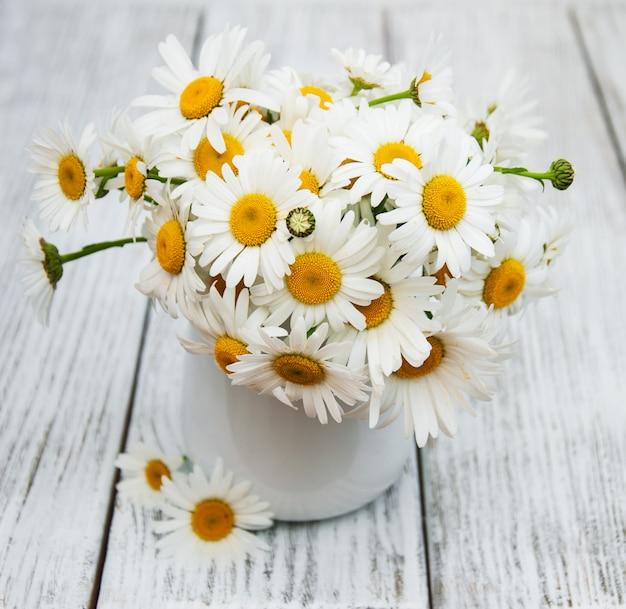 Gänseblümchen in der vase Premium Fotos
