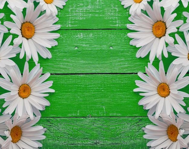 Gänseblümchenkamille blüht auf hölzernem hintergrund Premium Fotos