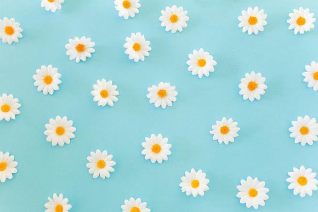 Gänseblümchenmuster auf blauem hintergrund Kostenlose Fotos