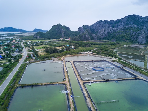 Garnelenfarmen von oben genanntem in sam roi yot national park, thailand. drohne, luftbild, draufsicht Premium Fotos