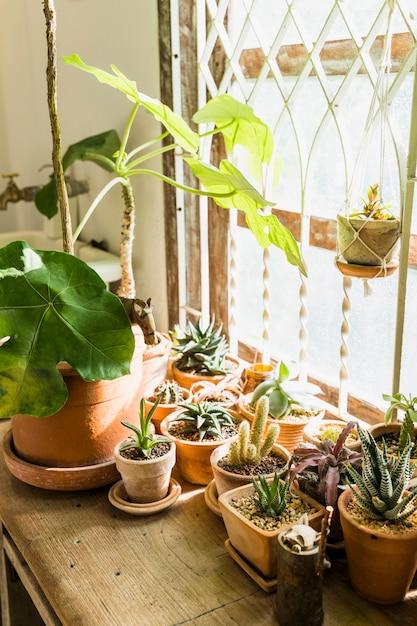 Gartenarbeit Kostenlose Fotos