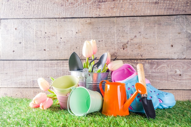 Gartengeräte und blumen Premium Fotos