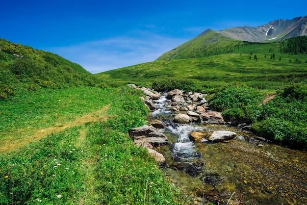 Gebirgsbach im grünen tal unter reicher vegetation des hochlands am sonnigen tag. schneller wasserfluss vom gletscher unter blauem klarem himmel. riesige schneebedeckte berge hinter hügel. klare landschaft der majestätischen natur. Premium Fotos