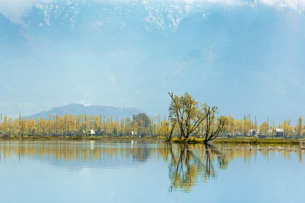 Gebirgshintergrund des lokalen dorfberges entlang der grenze von dal see in srinagar, k Premium Fotos