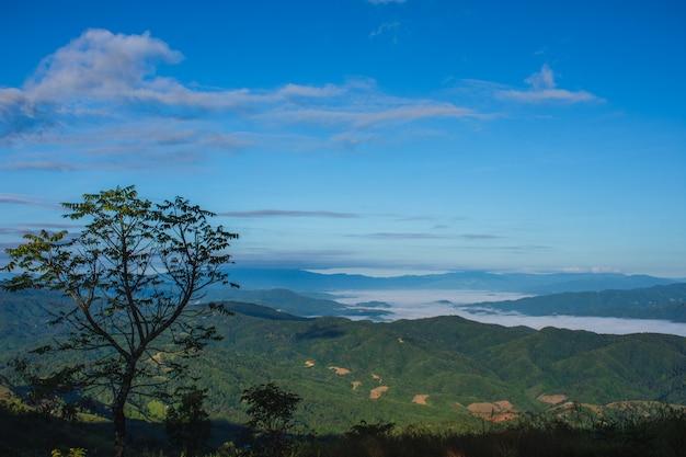 Gebirgslandschaft in den schönen wintertälern in doi chang mub mountains, mae fa luang, chiang rai. die schönheit des naturhintergrundes. Premium Fotos