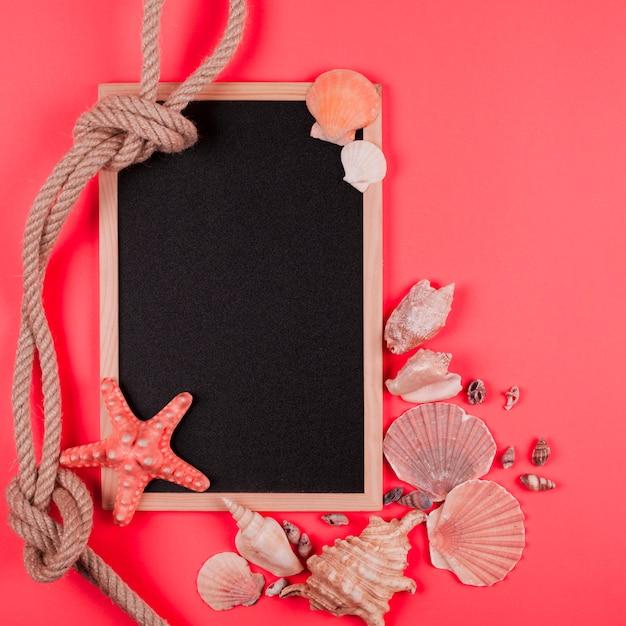 Gebundenes seil und muscheln mit leerer tafel auf korallenrotem hintergrund Kostenlose Fotos