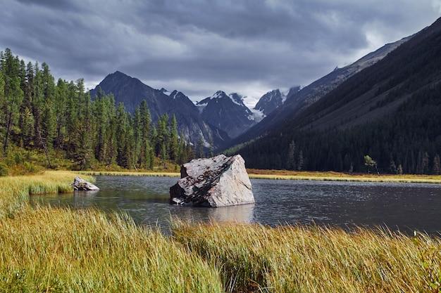 Gehen sie zu fuß durch die gebirgstäler. die schönheit der tierwelt. altai Premium Fotos