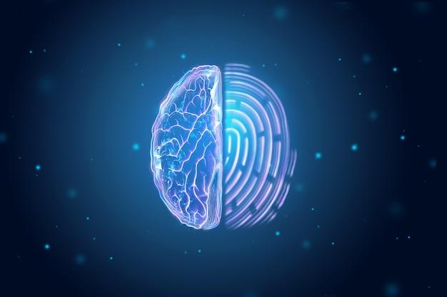 Gehirnhälfte und fingerabdruckansicht von oben. Premium Fotos
