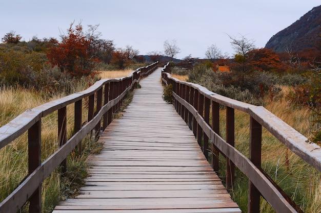 Gehweg im nationalpark, ushuaia. Premium Fotos