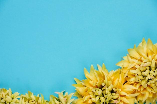 Gelbe chrysantheme der draufsicht mit kopienraum Kostenlose Fotos