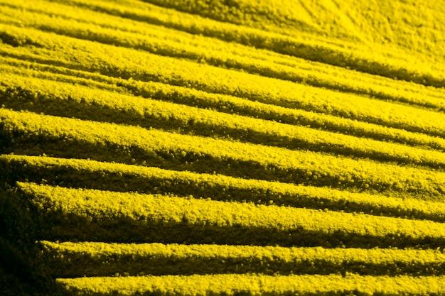 Gelbe parallele sandlinien hohe ansicht Kostenlose Fotos
