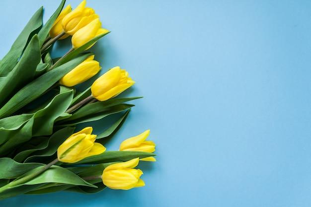 Gelbe tulpen auf blauem copyspace hintergrund Premium Fotos
