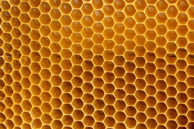 Gelbe wabentextur Kostenlose Fotos