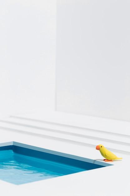 Gelber vogel neben dem schwimmbad Kostenlose Fotos
