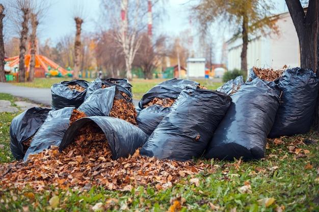 Gelbes und braunes laub wird in mehreren schwarzen plastikmüllsäcken gesammelt und auf dem grünen gras unter einem baum in einem stadtpark verstreut. konzept des herbstes im stadtgarten, der die stadt reinigt Premium Fotos